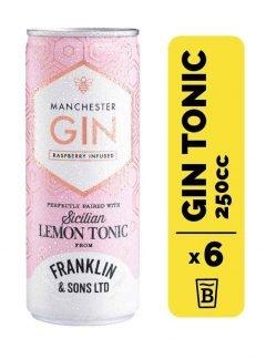 6 Gin Manchester Rasp & Franklin&Sons Tonic Lata 250cc