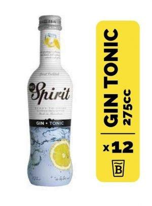 12 Mg Spirit Gin Tonic 275cc