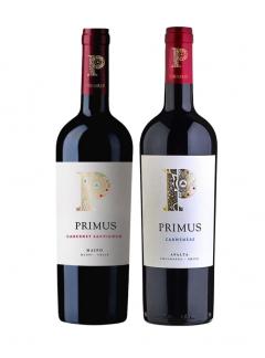 vino primus